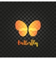 Isolated orange butterfly logo Insects vector image vector image