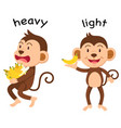 opposite words heavy and light vector image vector image