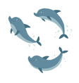 set ocute dolphins swimming and jumping cartoon vector image vector image