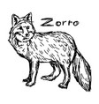 zorro standing - sketch hand drawn vector image vector image