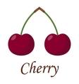Cherry couple illstration vector image