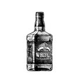 whiskey vector image vector image