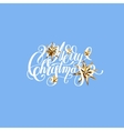 winter design with golden stars and handwritten vector image