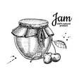 cherry jam glass jar drawing fruit jell vector image vector image