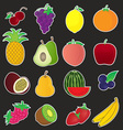 Fruits Icons Collection vector image