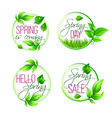 leaf grass of spring time isolated quotes vector image vector image