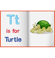 A picture of a turtle in a book vector image vector image