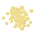 cubes garlic icon isometric style vector image vector image