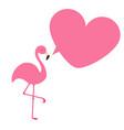 flamingo exotic tropical bird zoo animal vector image vector image