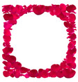 invitation template with rose petals vector image