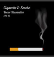 isolated cigaratte and smoke on black background vector image vector image