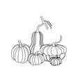 pumpkin autumn vector image vector image
