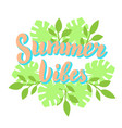 summer vibes lettering with tropical leaves vector image vector image