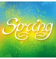 Hand drawn word SPRING lettering on colorful paint vector image