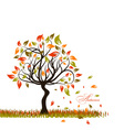 Tree autumn background vector image