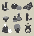 Basic Spa Icons Set vector image vector image