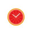 grapefruit slice clock business concept flat vector image vector image