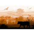 nature with wild animals Tiger Zebra goat monkey vector image vector image