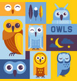 owls banner cute cartoon wise vector image