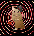 a hamster in love hypnotizes with a look vector image