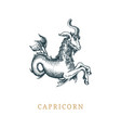 capricorn zodiac symbol hand drawn in engraving vector image vector image