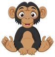 cute bachimpanzee cartoon sitting vector image vector image