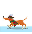 cute cartoon dog dressed in knitted scarf and hat vector image