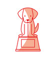 cute dog mascot in the podium vector image vector image