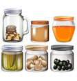 Different types of food in jars vector image vector image