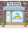 dry cleaning service vector image
