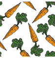 root vegetable seamless pattern carrot farm vector image