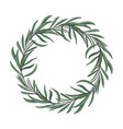 beautiful elegant hand drawn melaleuca twig vector image