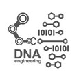 dna engineering creation synthetic dna dna vector image