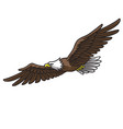 Eagle mascot logo spread wings