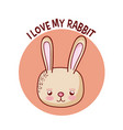 i love my rabbit vector image