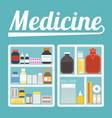 medicine cupboard vector image vector image