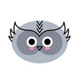 owl face cute isolated on white vector image vector image
