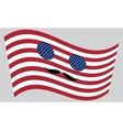 Patriotic USA icon with mustaches vector image