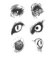 set animal eyes hand drawn eps8 vector image