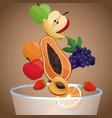 bowl fruit healthy diet vector image
