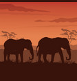 color sunset scene african landscape with vector image vector image