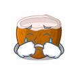 crying cartoon beverage coconuts on the beach vector image vector image