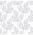 Hand drawn lovage branch outline seamless pattern vector image vector image