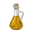 Olive oil in a bottle on white vector image