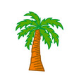 palm trees isolated white background design vector image