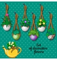 Set flowers in hanging pots and kettle 7 elements vector image vector image
