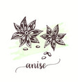 anise for tags cards vector image vector image