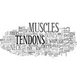 back pain and tendons text word cloud concept vector image vector image