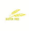 gluten free icon eco organic bio vector image vector image