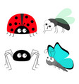 lady bug ladybird fly housefly spider butterfly vector image